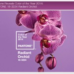 Orquídea Radiante para 2014