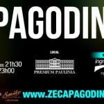 """Zeca Pagodinho celebra 30 anos de carreira com o show """"Vida Que Segue"""", no Premium Paulínia"""